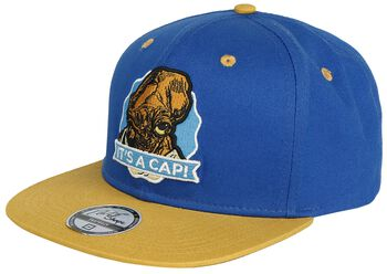 It's a cap!