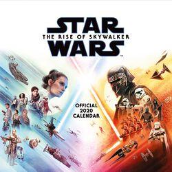 Episode 9 - The Rise of Skywalker Wall calendar 2020
