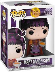 Mary Sanderson Vinyl Figure 559