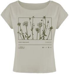 Dandelion Rectangle