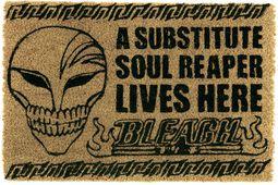 Bleach Substitute Soul Reaper