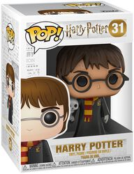 Harry with Hedwig - Vinyl Figure 31