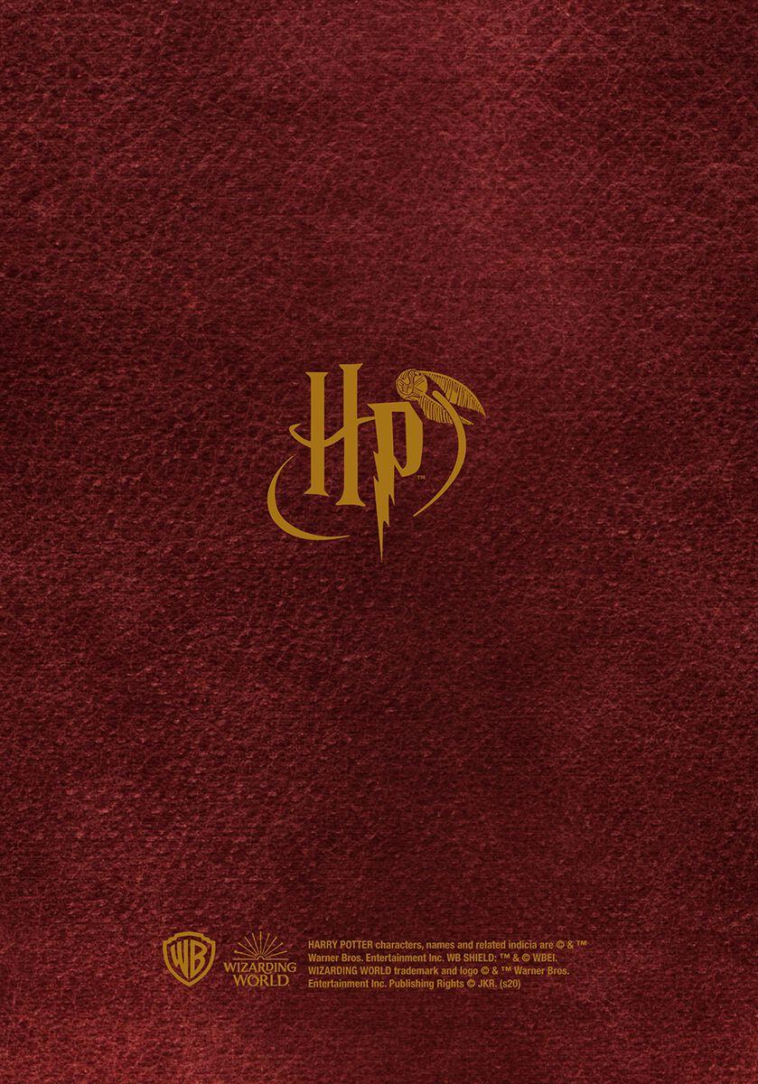 2020/2021 Diary   Harry Potter Calendar Book   EMP