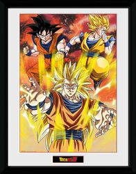 Z - 3 Gokus