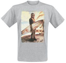 Chewie On The Beach
