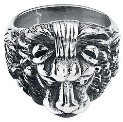 Lion's Head