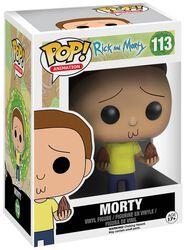 Morty Vinyl Figure 113