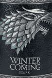 Winter Is Coming Tankard