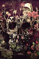 Bloom Skull
